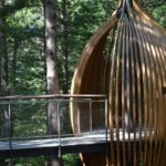 Canopy Walk Pods in forest