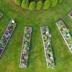 Aerial of planted beds in Children's Garden