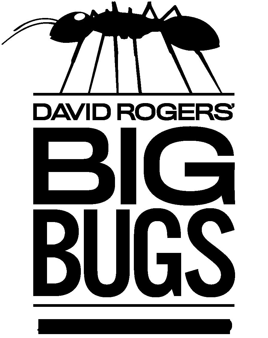 David Rogers' Big Bugs   June 5 - Sept. 6, 2020