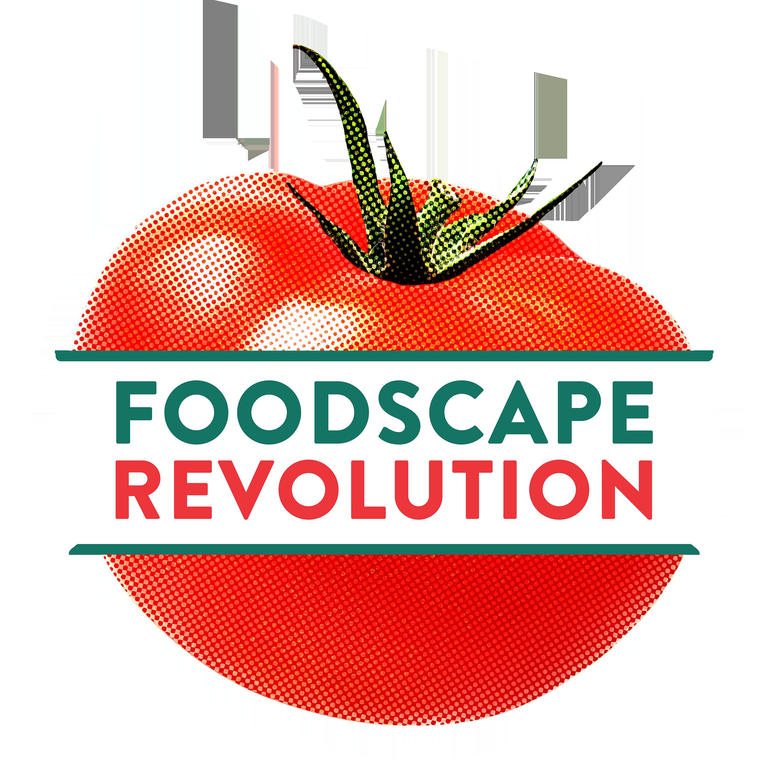 Revolution Logo 2