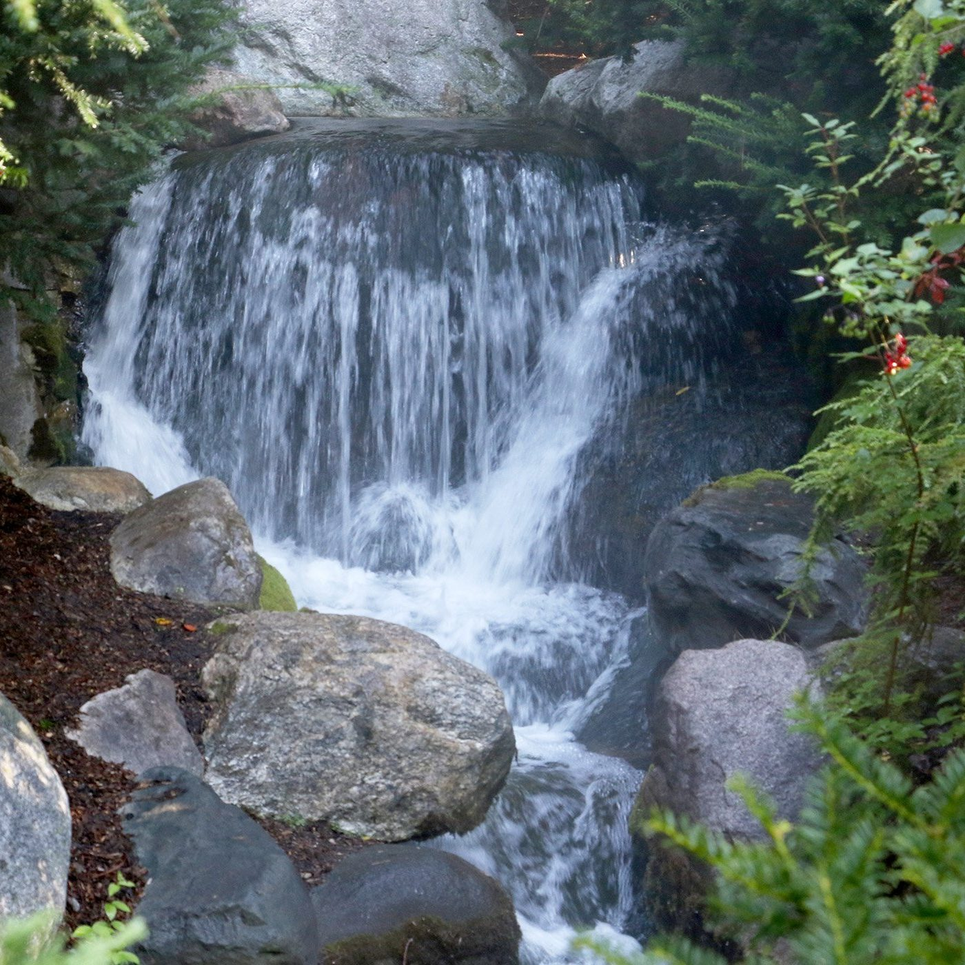 Waterfall at Dow Gardens